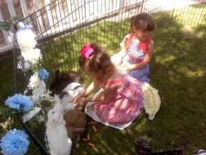 Bunny Zoo 25 (2)